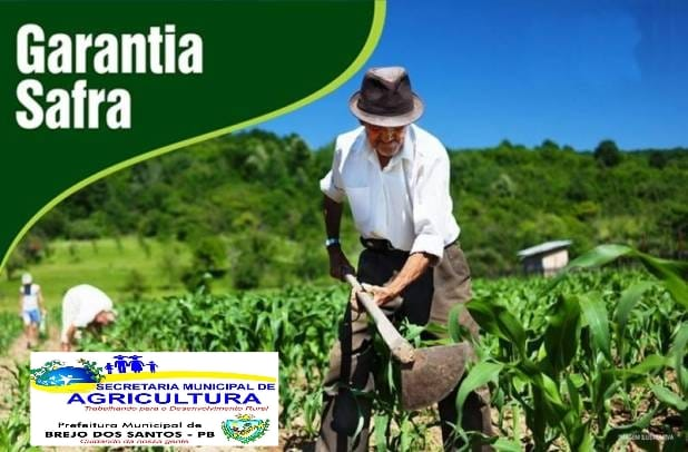 Read more about the article Garantia Safra