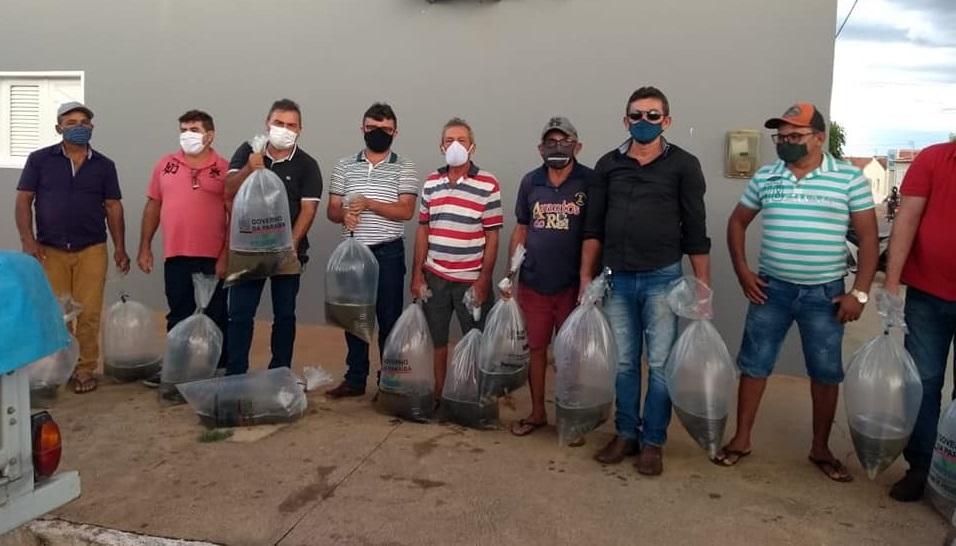 Read more about the article Parceria entre a Prefeitura de Brejo dos Santos e o CODEMP, realizou a distribuição de Alevinos